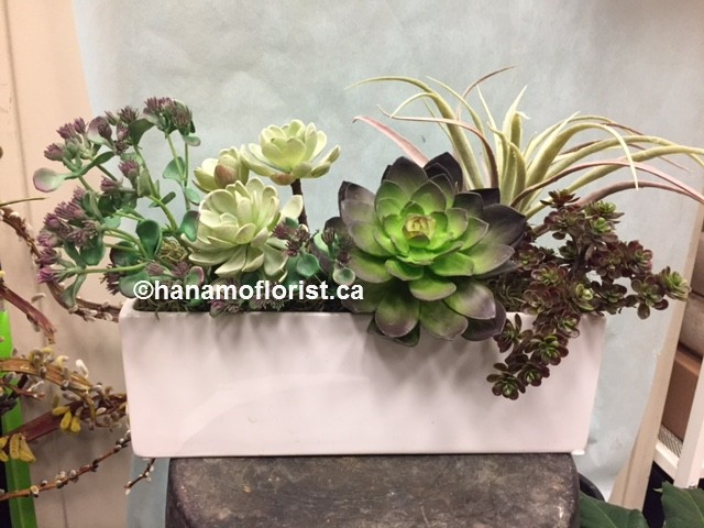 ART313 Artificial Assorted Succulnt Arrangemnt in Rectangle Pot