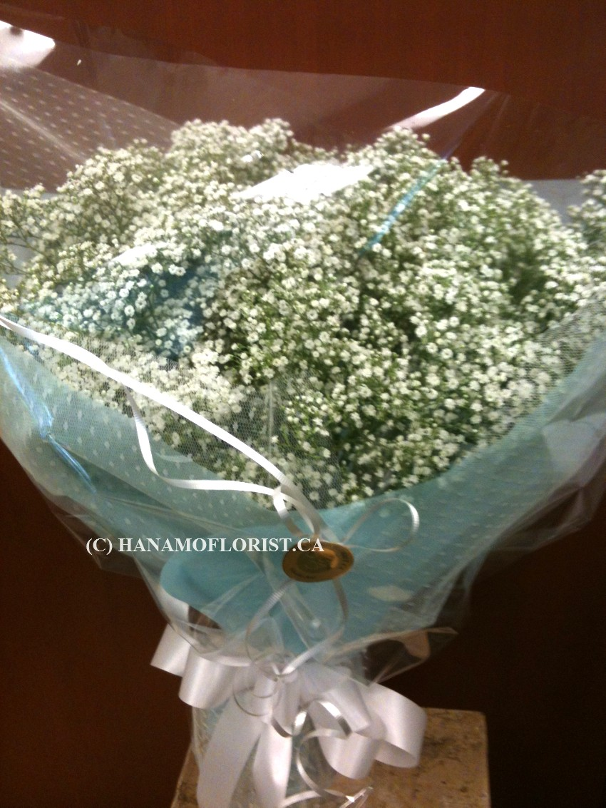 HAND608 Baby Breath Handtied