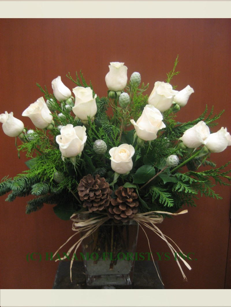 "CMAS052 ""Special"" 1 doz Champagne White Rose Christmas Vase M"