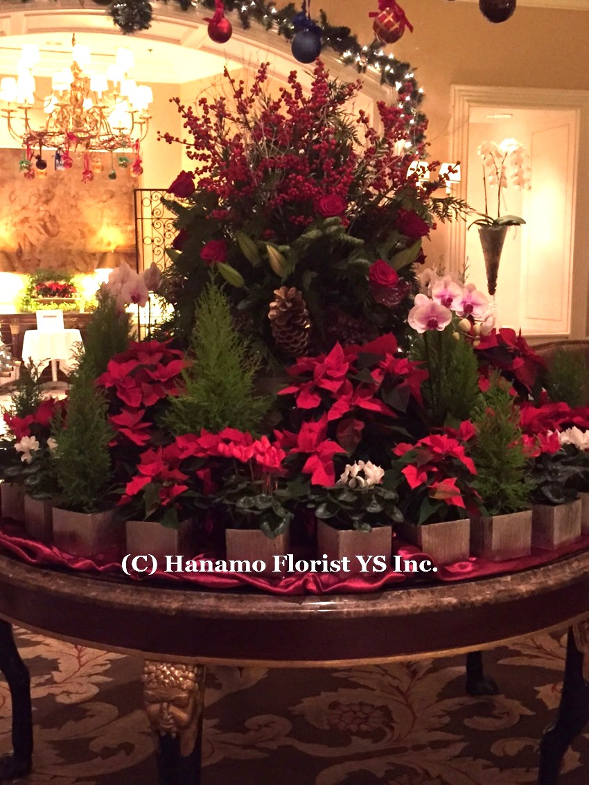 CMAS20152 Christmas arrangement display