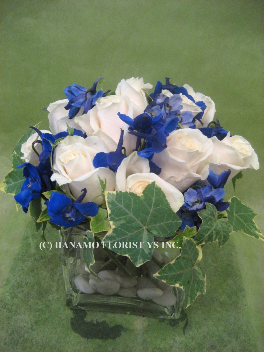 "CUBE504 White Roses & Seasonal Purple or Blue fillers in 5""Cube"