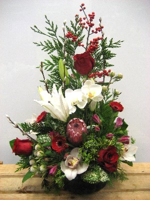 CMAS010 Desiner's choice Holiday Japanese Arrangement Medium
