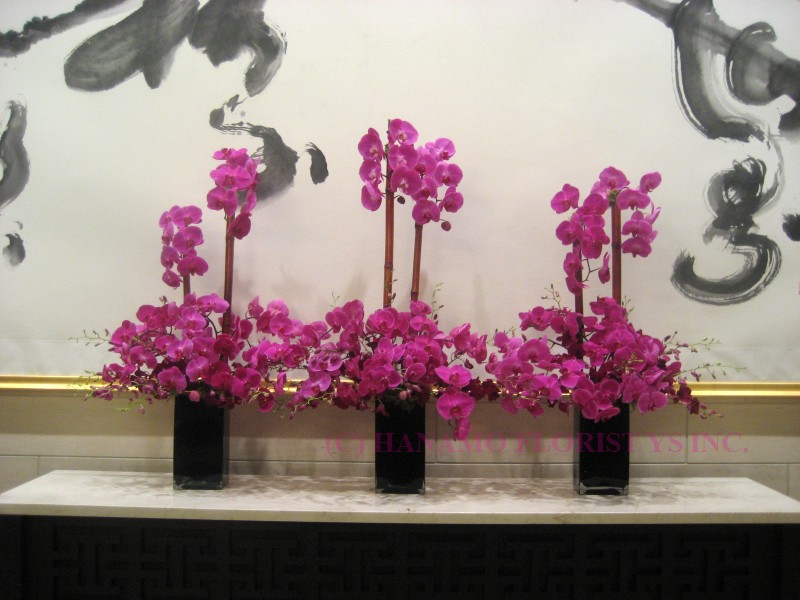 CRED002 Phalaenopsis Arrangement - Click Image to Close