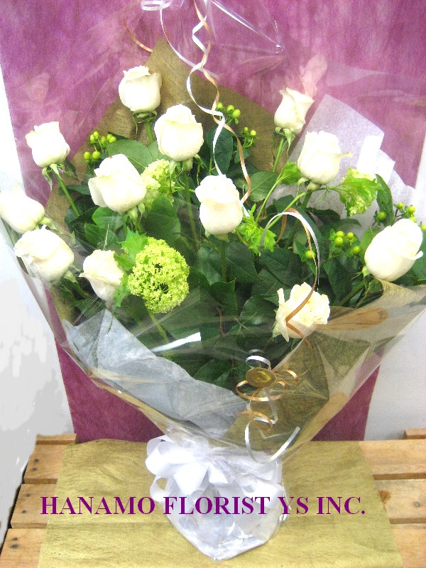 ROSE115 1 Doz Long Stem Premium Ecuador White Roses BQ