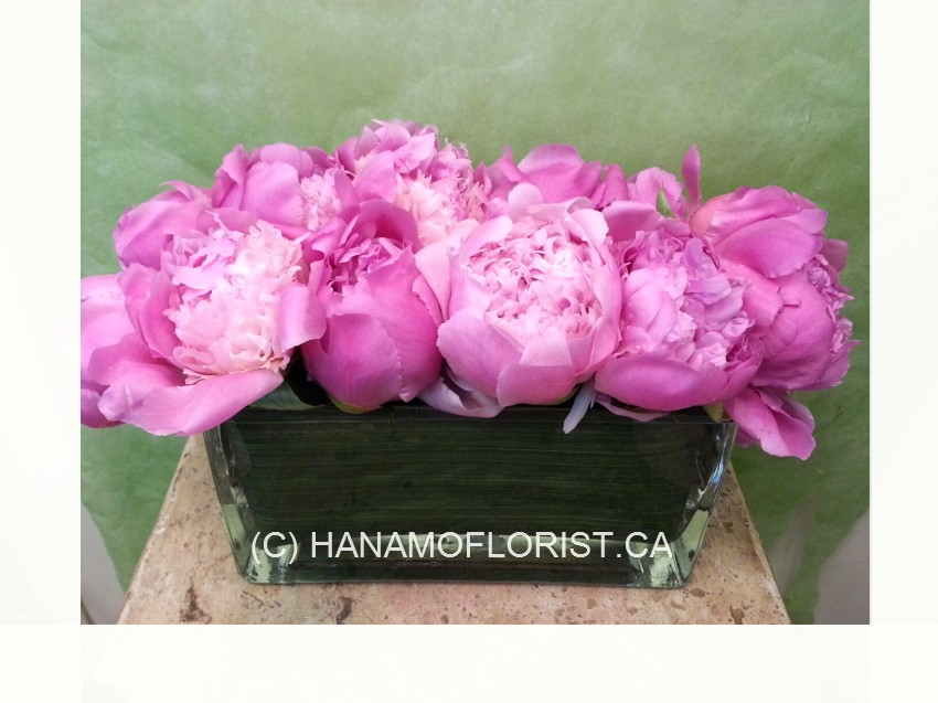 TABL531 PInk Peonies Low Arrangement simple table centre