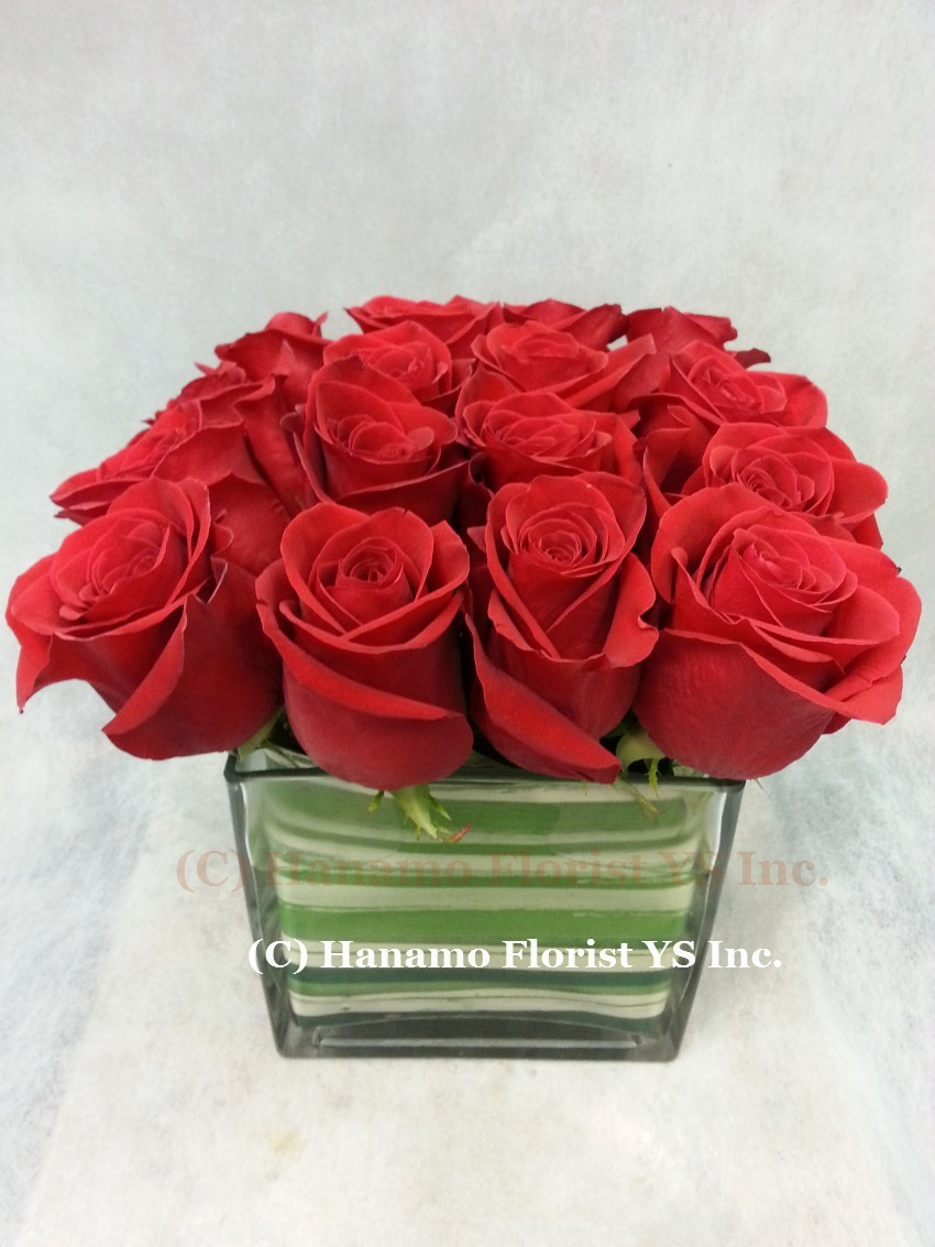 ROSE930  Fresh Equadorian Red Roses in 6 inch Cube