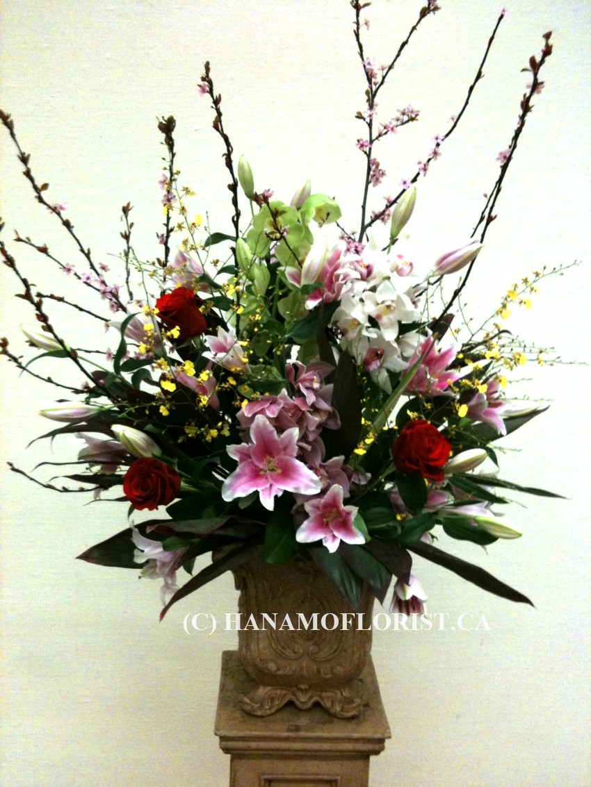 STAG0301 Japanese Arrangement LL