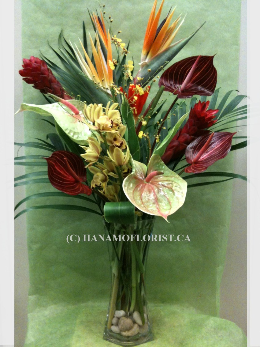 TROP202 Tropical Flowers arrangement in Vase ML
