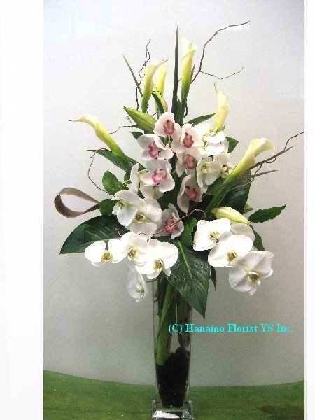 VASE031 White Orchids & Calla Tall Vase Arrangement