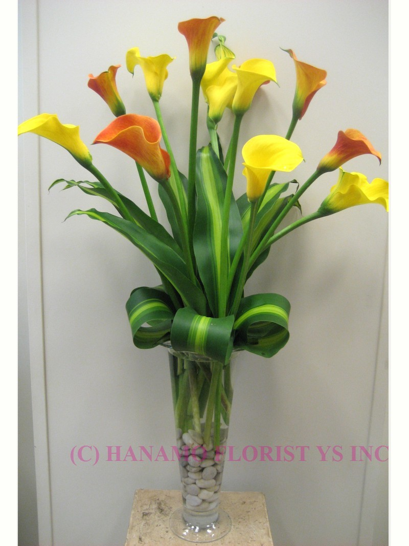 VASE053 1 doz Calla Lily in a Tall Vase (Seasonal Color)