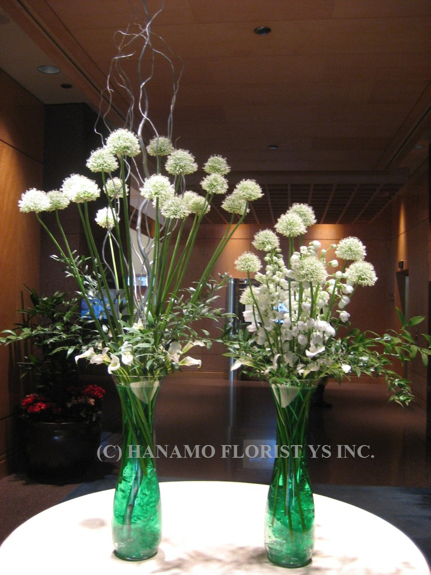 LOBB007 White Alliums in large twin vases
