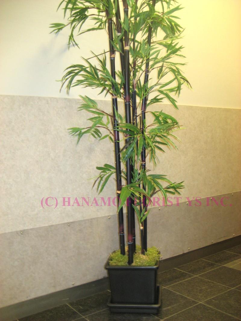 hanamo florist store vancouver bc canada quality arrangements using a plethora of the