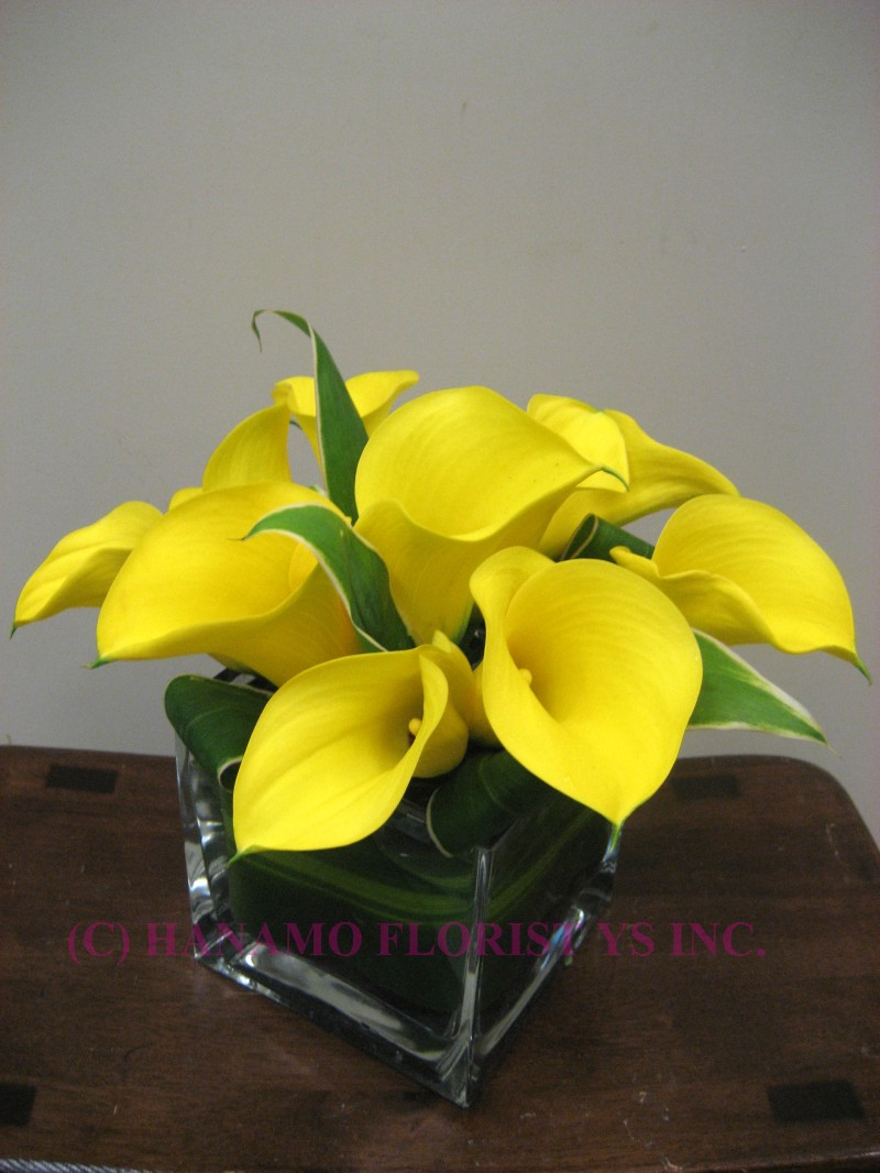 CUBE052 Calla Lilies in 4 Inch Cube Vase