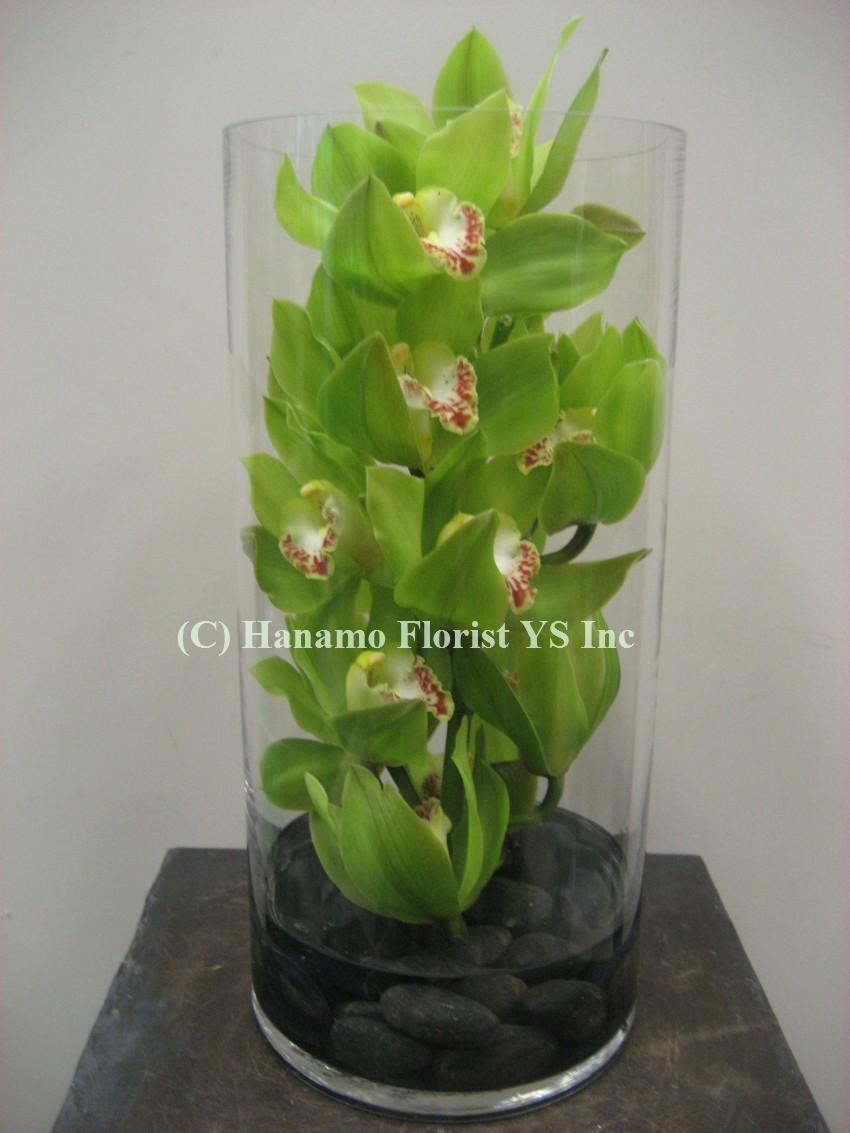 Hanamo Florist Online Store Vancouver Bc Canada Quality Arrangements Using A Plethora Of The